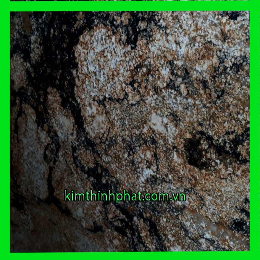 đá hoa cương 100.113